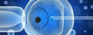 Falacias en reproducción asistida