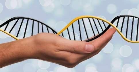 adn-problema-genetico
