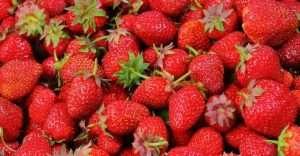 antioxidantes-fresas