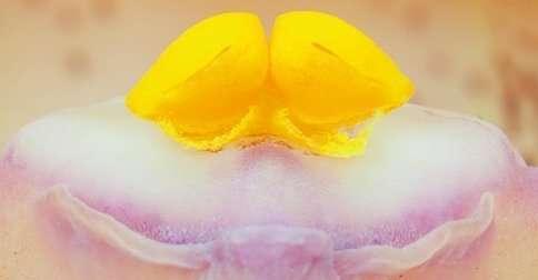 La exploración ginecológica básica