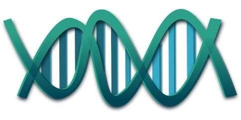 Conservación del ADN de donantes